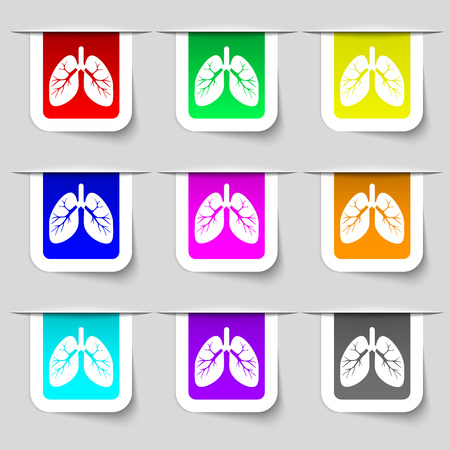 respiration: Lungs icon sign. Set of multicolored modern labels for your design. illustration Stock Photo