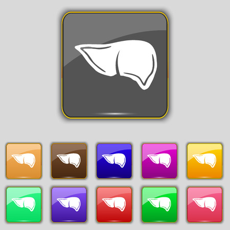 hepatology: Liver icon sign. Set with eleven colored buttons for your site. illustration
