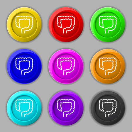 large intestine icon sign. symbol on nine round colourful buttons. illustration Stock Photo