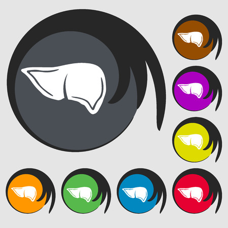 Liver sign icon. Symbols on eight colored buttons. illustration