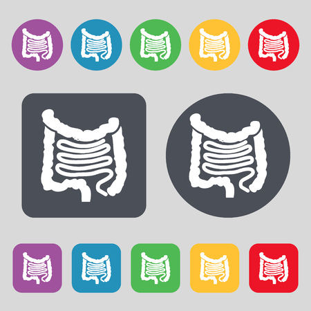 descending colon: Intestines icon sign. A set of 12 colored buttons. Flat design. illustration Stock Photo