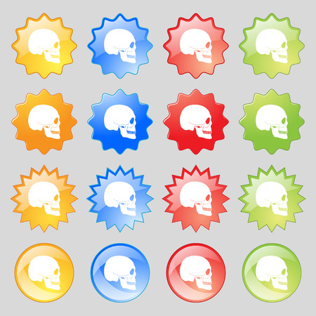 privateer: Skull icon sign. Big set of 16 colorful modern buttons for your design. illustration