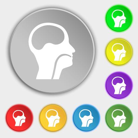 paranasal: larynx, Medical Doctors Otolaryngology icon sign. Symbol on eight flat buttons. illustration Stock Photo