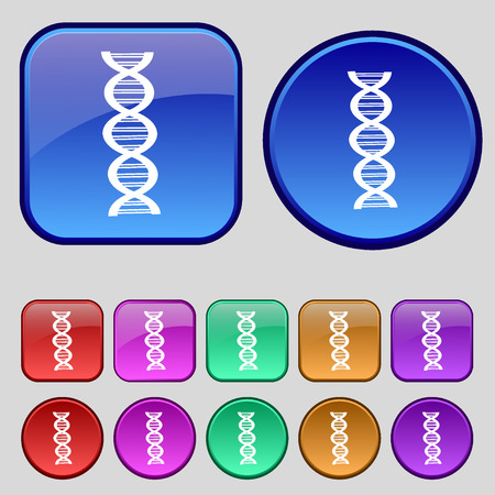 dna icon: DNA icon sign. A set of twelve vintage buttons for your design. illustration Stock Photo