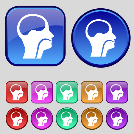 paranasal: larynx, Medical Doctors Otolaryngology icon sign. A set of twelve vintage buttons for your design. illustration Stock Photo