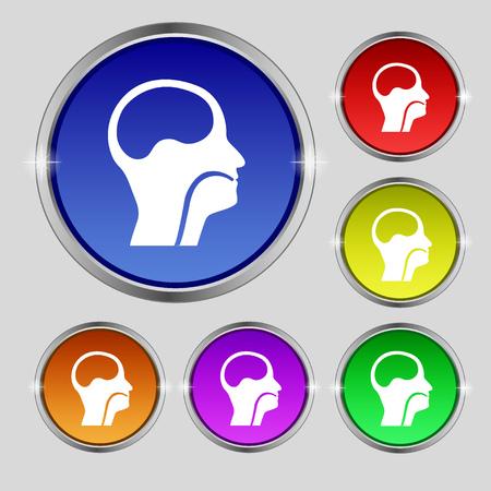 larynx: larynx, Medical Doctors Otolaryngology icon sign. Round symbol on bright colourful buttons. illustration