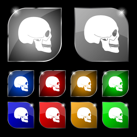 counterfeiting: Skull icon sign. Set of ten colorful buttons with glare. illustration