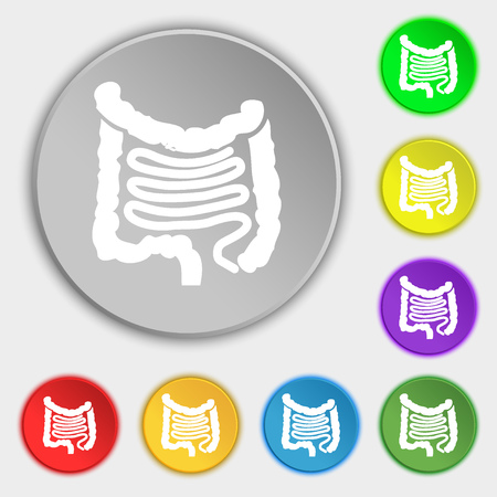 intestines: Intestines icon sign. Symbol on eight flat buttons. illustration