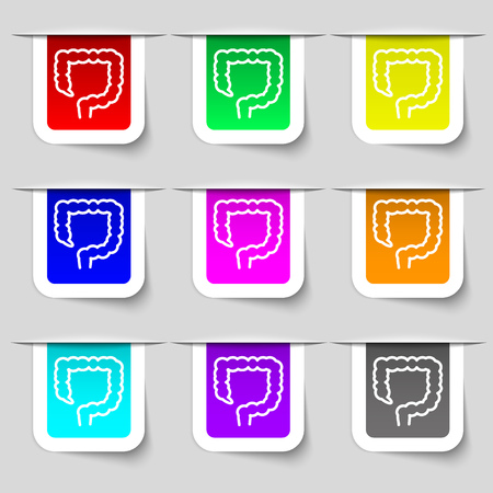 duodenum: large intestine icon sign. Set of multicolored modern labels for your design. illustration Stock Photo