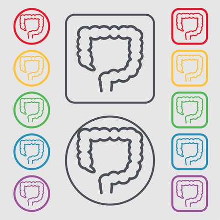 jejunum: large intestine icon sign. symbol on the Round and square buttons with frame. illustration Stock Photo