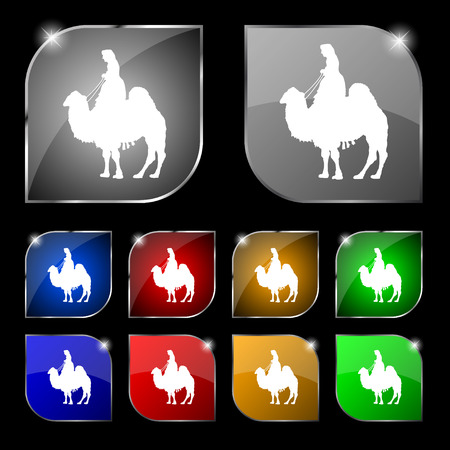 borden: Camel icon sign. Set of ten colorful buttons with glare. illustration Stock Photo
