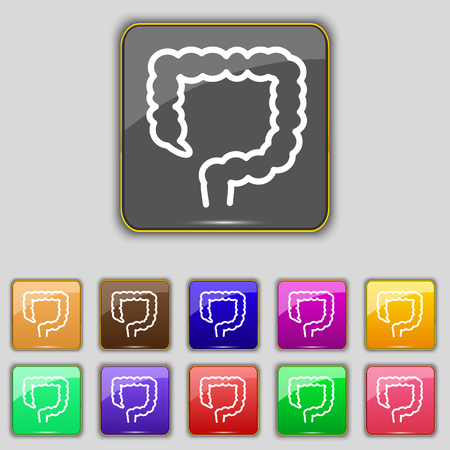 cecum: large intestine icon sign. Set with eleven colored buttons for your site. illustration