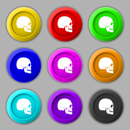 privateer: Skull icon sign. symbol on nine round colourful buttons. illustration