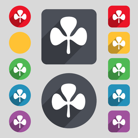 clover face: Clover icon sign. A set of 12 colored buttons and a long shadow. Flat design. illustration