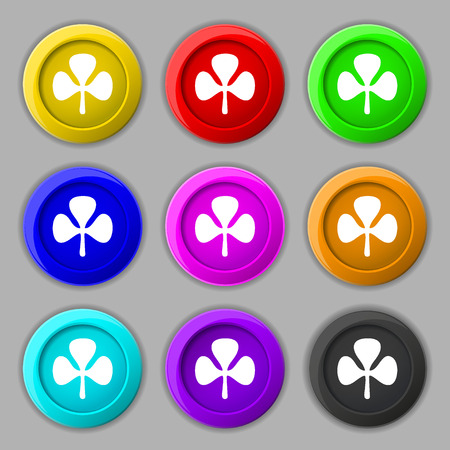 clover buttons: Clover icon sign. symbol on nine round colourful buttons. illustration