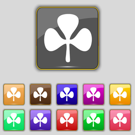 gold buckle: Clover icon sign. Set with eleven colored buttons for your site. illustration