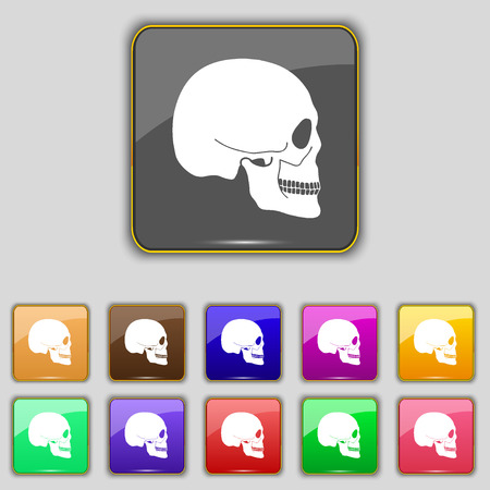 privateer: Skull icon sign. Set with eleven colored buttons for your site. illustration Stock Photo