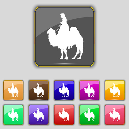 borden: Camel icon sign. Set with eleven colored buttons for your site. illustration Stock Photo