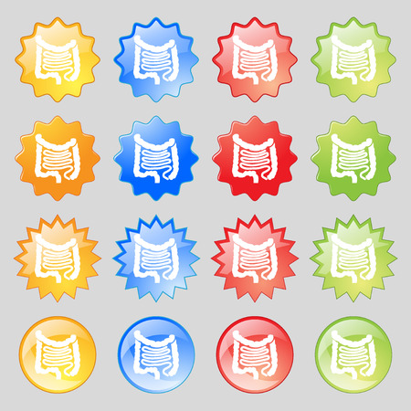 Intestines icon sign. Big set of 16 colorful modern buttons for your design. illustration Stock Photo