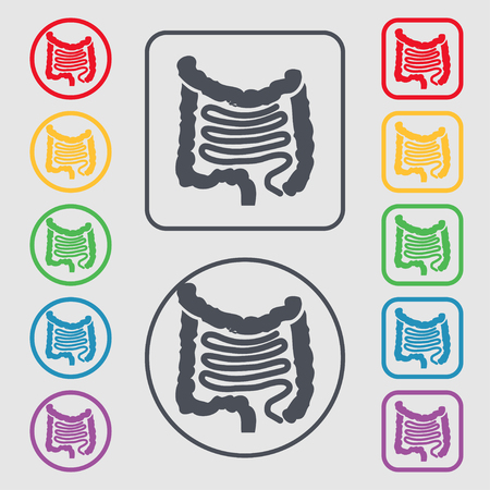 duodenum: Intestines icon sign. symbol on the Round and square buttons with frame. illustration Stock Photo