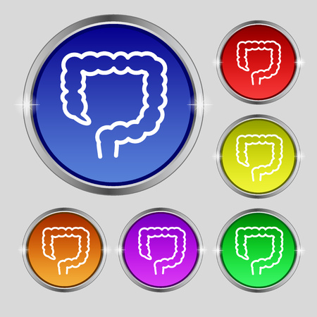 large intestine: large intestine icon sign. Round symbol on bright colourful buttons. illustration Stock Photo