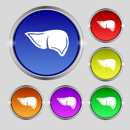 Liver icon sign. Round symbol on bright colourful buttons. illustration