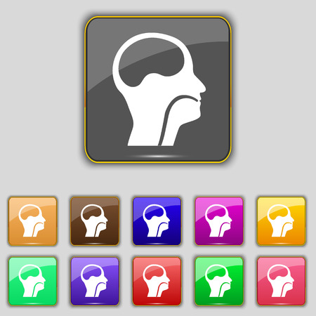 pleura: larynx, Medical Doctors Otolaryngology icon sign. Set with eleven colored buttons for your site. illustration