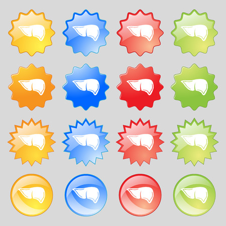 jaundice: Liver icon sign. Big set of 16 colorful modern buttons for your design. illustration Stock Photo