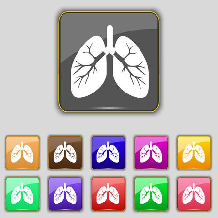pulmones: Lungs icon sign. Set with eleven colored buttons for your site. illustration