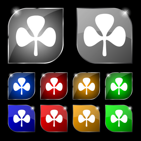 clover buttons: Clover icon sign. Set of ten colorful buttons with glare. illustration