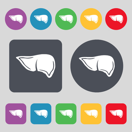 hepatology: Liver icon sign. A set of 12 colored buttons. Flat design. illustration