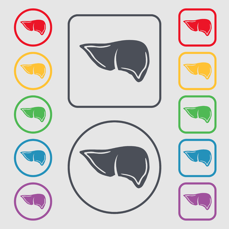 hepatology: Liver icon sign. symbol on the Round and square buttons with frame. illustration