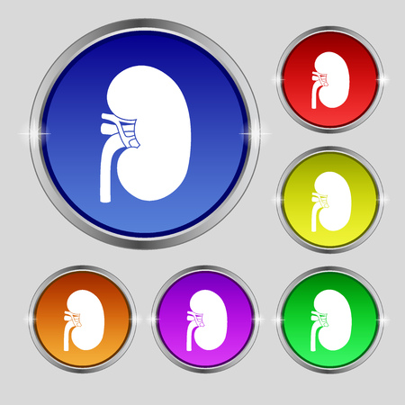 renal failure: Kidney icon sign. Round symbol on bright colourful buttons. illustration
