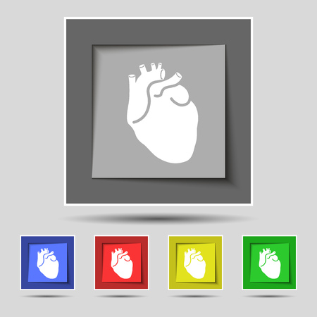 detail of heart muscle: Human heart icon sign on original five colored buttons. illustration