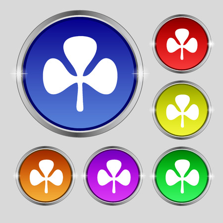 clover buttons: Clover icon sign. Round symbol on bright colourful buttons. illustration