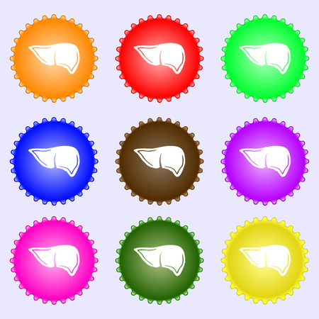 Liver icon sign. Big set of colorful, diverse, high-quality buttons. illustration Stock Photo