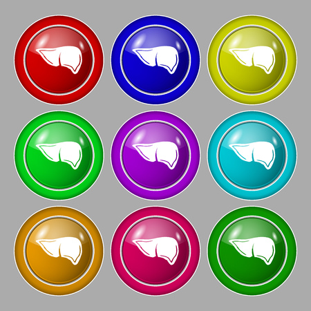 Liver icon sign. symbol on nine round colourful buttons. illustration