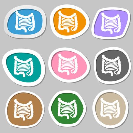 cecum: Intestines symbols. Multicolored paper stickers. illustration Stock Photo