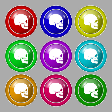 Skull icon sign. symbol on nine round colourful buttons. illustration