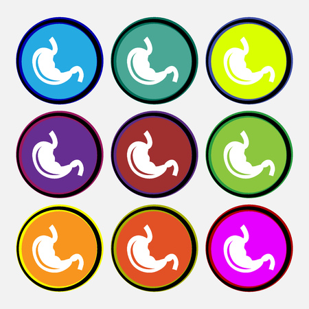 Stomach icon sign. Nine multi colored round buttons. illustration