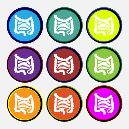 sigmoid colon: Intestines icon sign. Nine multi colored round buttons. illustration Stock Photo
