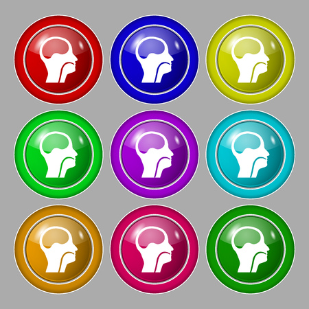 larynx: larynx, Medical Doctors Otolaryngology icon sign. symbol on nine round colourful buttons. illustration