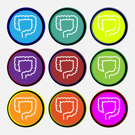 intestino grueso: gran icono de la muestra intestino. Nueve de varios botones de colores redondos. ilustración Foto de archivo
