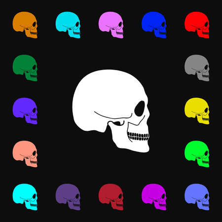 privateer: Skull icon sign. Lots of colorful symbols for your design. illustration