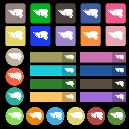 hepatology: Liver icon sign. Set from twenty seven multicolored flat buttons. illustration