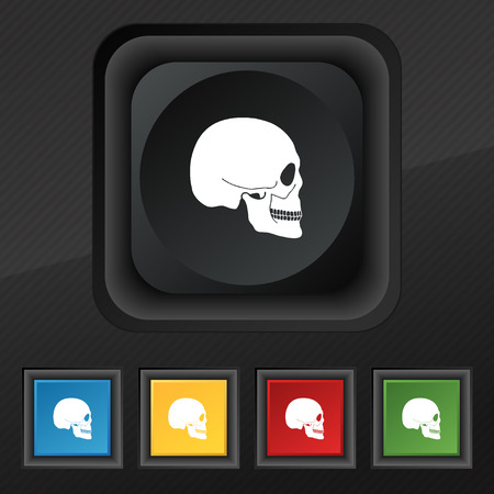 privateer: Skull icon symbol. Set of five colorful, stylish buttons on black texture for your design. illustration