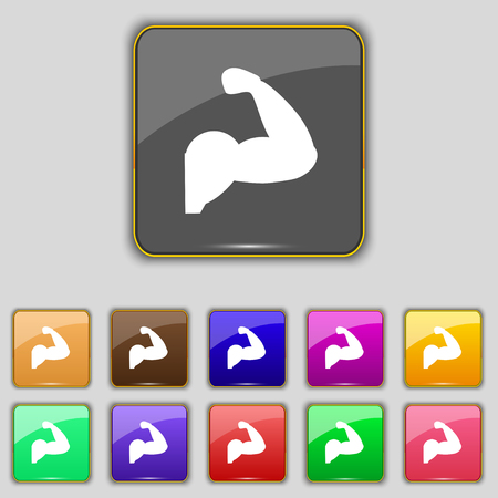 muscular control: Biceps strong arm. Muscle icon sign. Set with eleven colored buttons for your site. Vector illustration