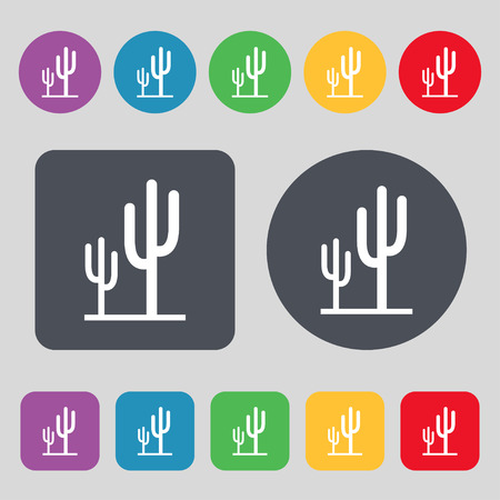 vegetal: Cactus icon sign. A set of 12 colored buttons. Flat design. Vector illustration