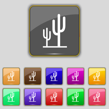 vegetal: Cactus icon sign. Set with eleven colored buttons for your site. Vector illustration