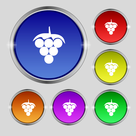 Grapes icon sign. Round symbol on bright colourful buttons. Vector illustration